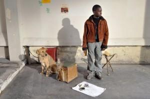 Une scène du film Le Havre, avec Blondin Miguel et la chienne Laïka.