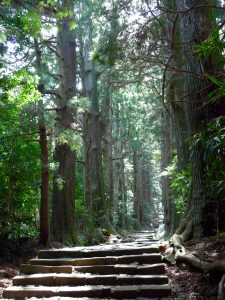 L'escalier monummental Daimon zaka